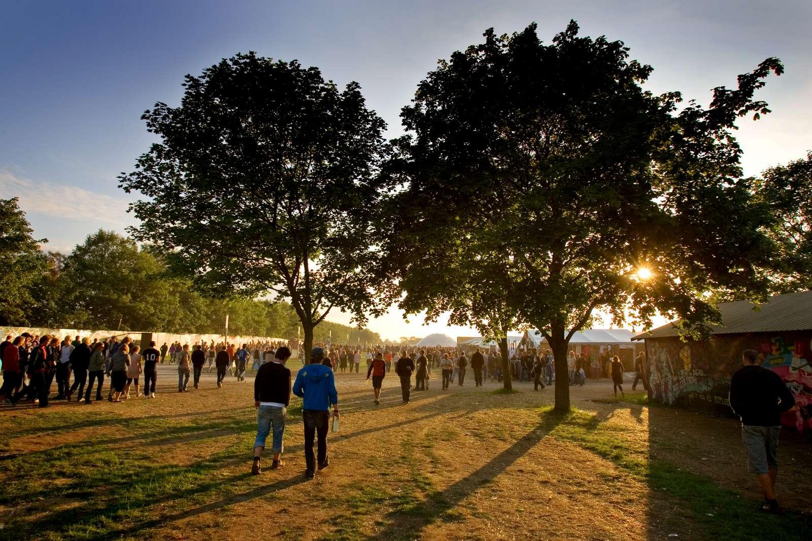 Roskilde Festival - Foto: Thomas Kjær